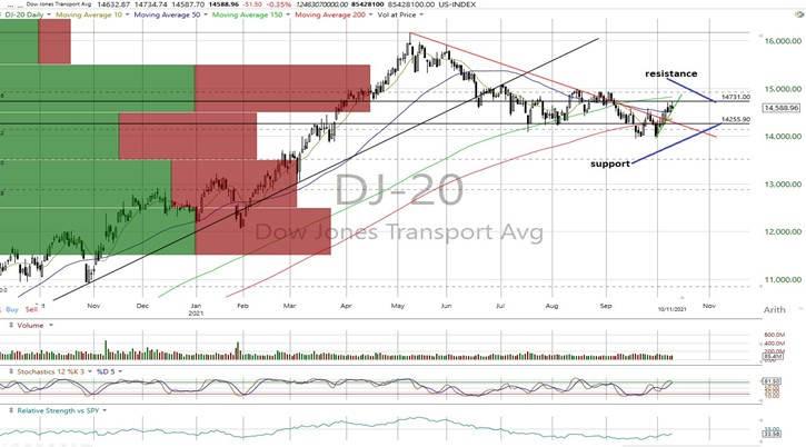 DJT Daily Chart