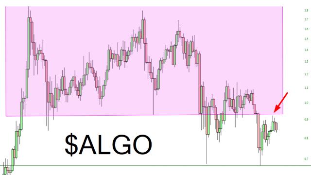 Algorand Chart.