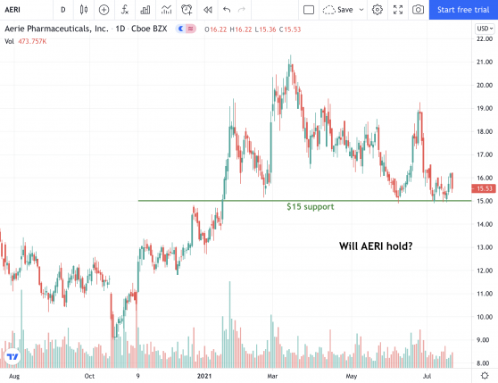 Will Aerie Pharmaceuticals Hold its Support Level?